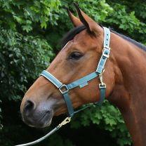 Bucas  Halfter Dublin Pony Mallard Green