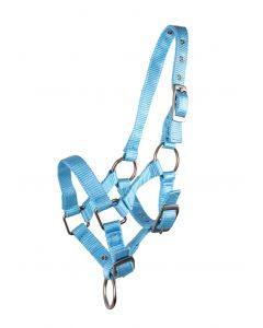 QHP Head collar foal