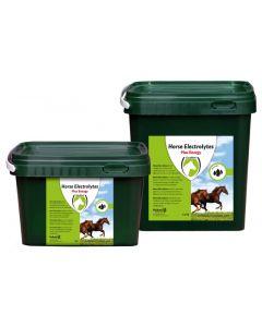 Hofman Pferdeelektrolytpulver 1kg