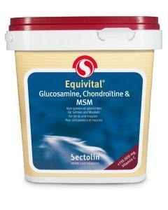 Sectolin Equivital Glucosamin, Chondroitin & MSM 1 kg