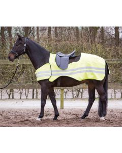 Harry's Horse Übungsblatt Reflektierend