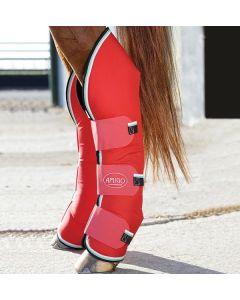 Horseware Amigo Tendon  Fetlock Boots
