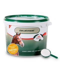 Sectolin Gelatinat Pferd – PrimeVal