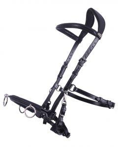 QHP Cavesson Leder schwarz